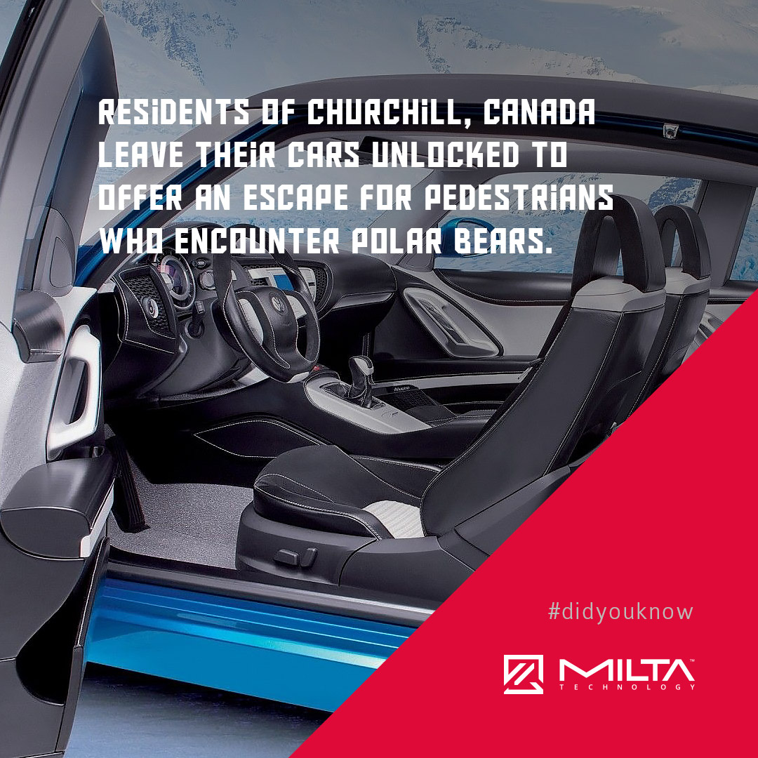 Residents of Churchill, Canada leave their cars unlocked to offer an escape for pedestrians who encounter polar bears MILTA Technology