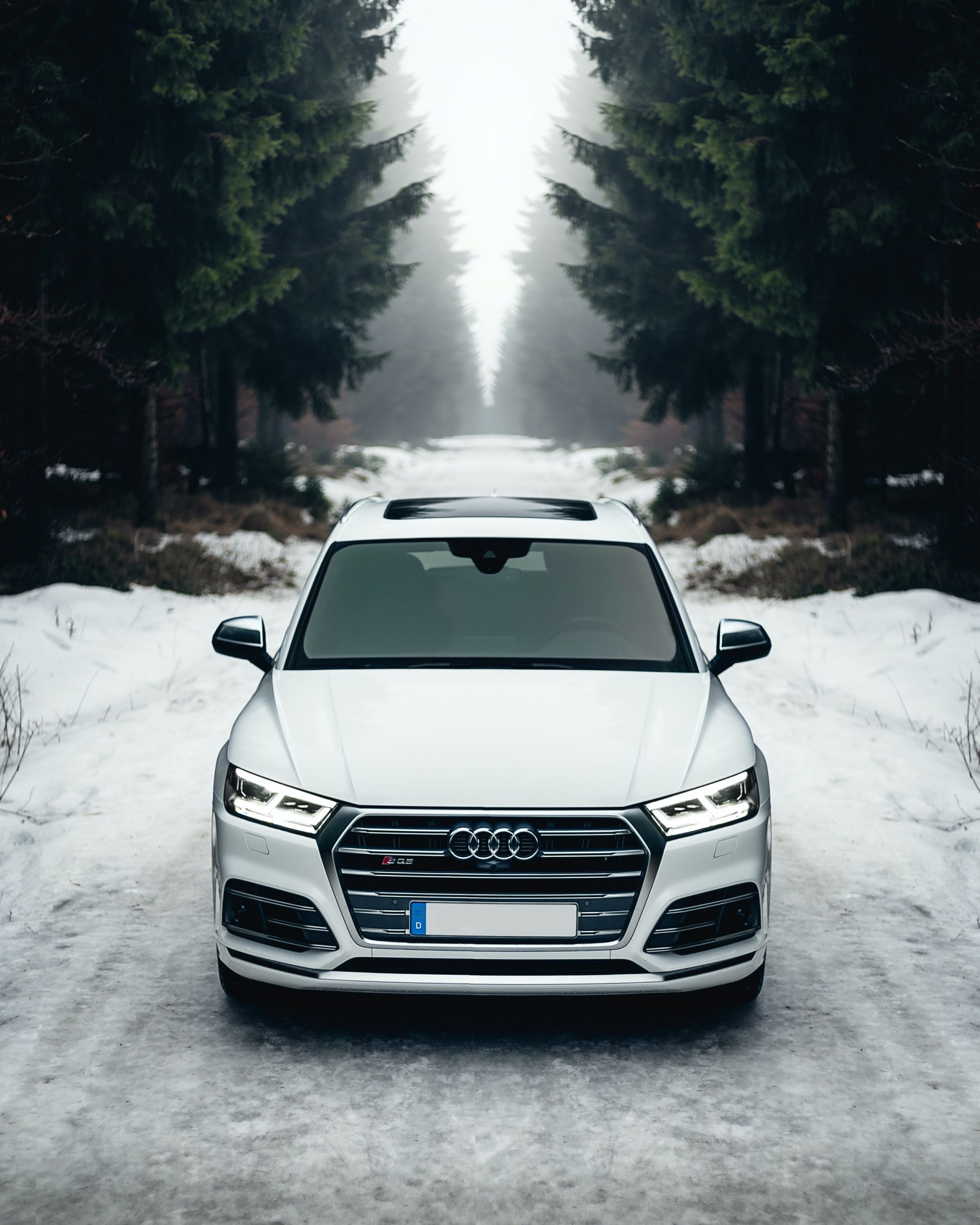 Audi Q series in winter
